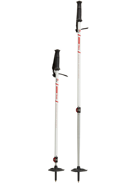 MSR DynaLock Trail Poles 2-Section
